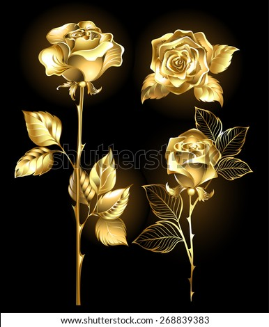 Set of gold, shining roses on a black background