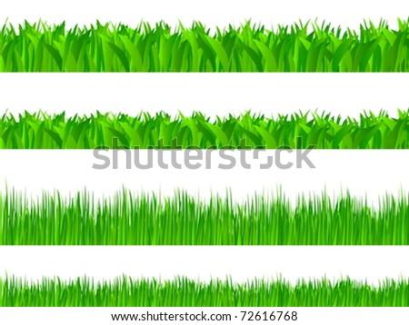 Set of grass on white background. Vector illustration. - stock vector
