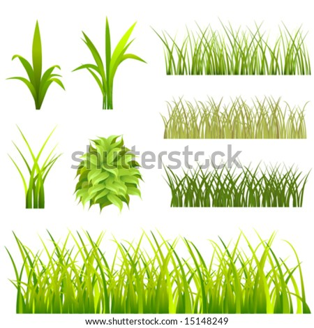 set of grass vector - stock vector