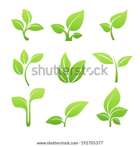 Set of green leaves design elements. Green sprout green leaves symbol vector icon set. - stock vector