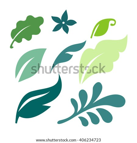 Set of green leaves design elements. Green sprout green leaves symbol vector logo icon set. Vector tropical palm leaves, jungle leaves set isolated on white background - stock vector - stock vector
