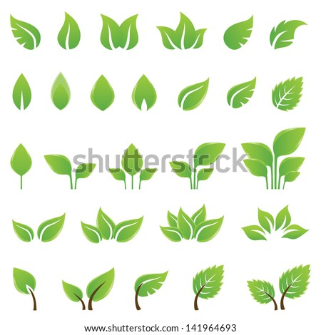 Set of green leaves design elements. This image is a vector illustration. - stock vector