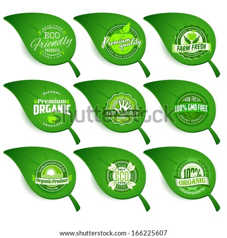 Set of green leaves with eco labels of healthy organic natural fresh farm food - stock vector