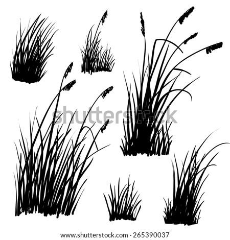 Grass Outline Vector Beach Grass Sto...