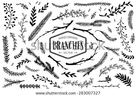 Set of hand drawn branches. Ink illustration. - stock vector