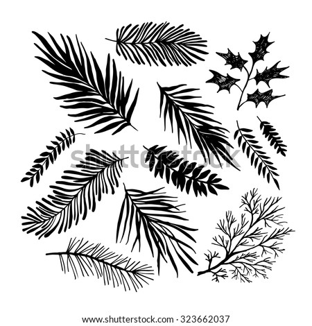 Set of hand drawn branches. Ink illustration. Collection of plants. - stock vector