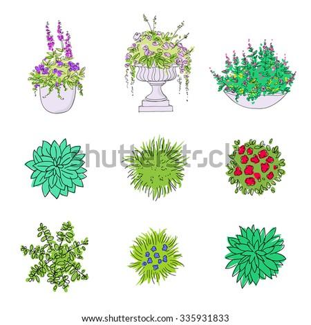 Set of hand drawn garden design elements for landscaping. Bushes, vases of flowers, hostas - stock vector