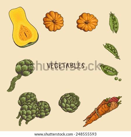 Set of hand-drawn vegetables: pumpkin, artichoke, carrots and peas.   - stock vector