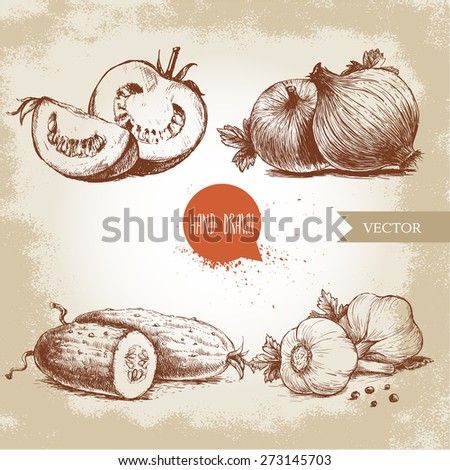Sliced Onions Drawing Sliced Tomatoes Onion