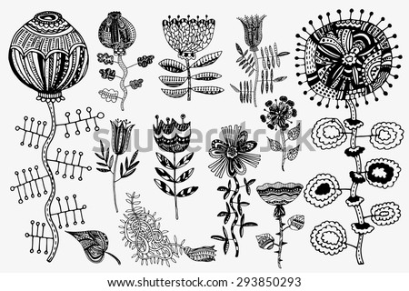 Set of hand-painted flowers. Ink pen, a clear outline. Each object is integrated into the group. Stock vector. A sketch in a notebook coloring. Spring summer flowers.  Patterned design elements. - stock vector