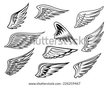 Set of heraldic vector wings in black and white with feather detail for tattoo or logo design, isolated on white - stock vector