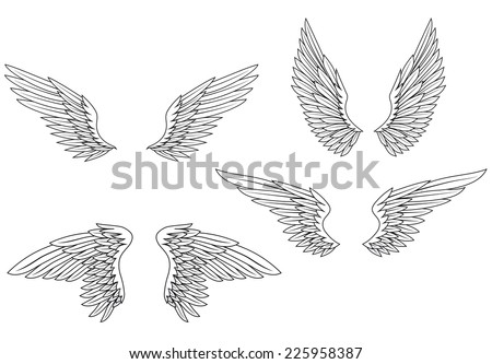 Set of heraldic wings for design and ornate - stock vector