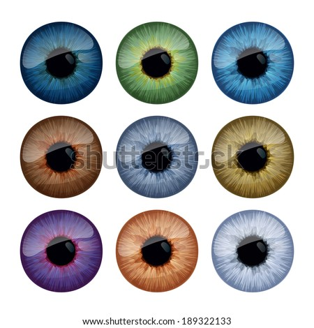 Set of human eyes iris isolated on white background. - stock vector