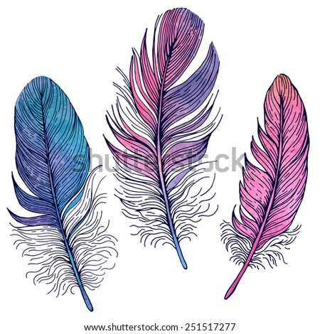 Set of illustrations with feathers. Watercolor and contour. - stock vector