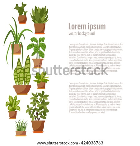 Set of INDOOR plant isolated. Vector flat indoor plant pot illustration. Collection of flat home plant pot. Colorful indoor plants in pot for your design. Home plants icons set - stock vector