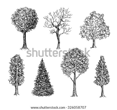 Set of ink hand drawn black and white trees. Vector illustration - stock vector