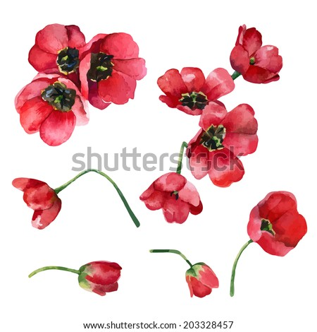 Set of isolated elements of red flowers tulips. Vector illustration - stock vector