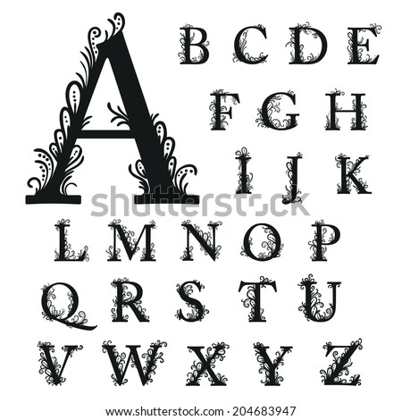 Set of Isolated stylized calligraphic illustrations. Vector A, B, C, D, E, F, G, H, I, J, K, L, M, N, O, P, Q, R, S, T, U, V, W, X, Y, Z. - stock vector