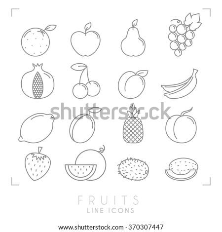 Set of line Fruit icons. Flat style. Orange, apple, pear, grape, pomegranate, cherry, apricot, banana, lemon, plum, pineapple, peach, watermelon, kiwi, melon, strawberry. - stock vector