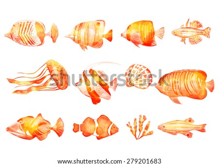 Set of marine fish and seashells. Vector illustration. Watercolor background. Angelfish. Tropical fish. Golden fish. - stock vector