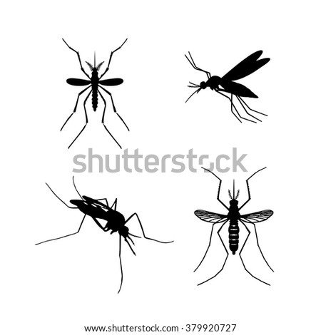 Set of mosquito silhouettes isolated on white background. Vector mosquito silhouettes. Aegypti flying mosquito. Zika virus transmission. Vector aegypti mosquito silhouettes isolated on white. Fly.Pest - stock vector