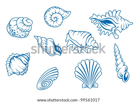 Set of ocean seashells isolated in white background, such  a logo. Jpeg version also available in gallery - stock vector