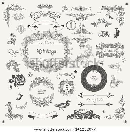 Set of ornamental design elements vintage  - stock vector