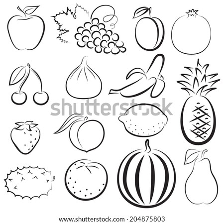 Fruit Sketch Drawing Sketch of Different Fruits