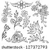 set of painted flowers, black and white sketch. Many similarities to the author's profile. - stock vector