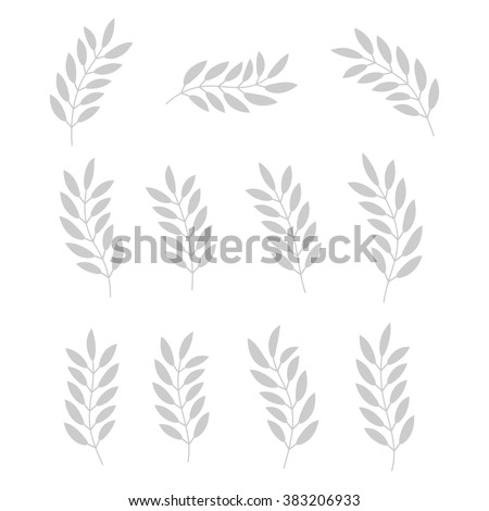 Set of plants isolated on white background.  Floral design elements set. Foliage icon. Tree branch with leaves. Vector illustration. - stock vector