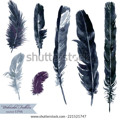 set of plumes, watercolor drawing feathers, hand drawn vector illustration - stock vector