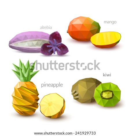 Set of polygonal fruit - akebia, mango, pineapple, kiwi. Vector illustration - stock vector