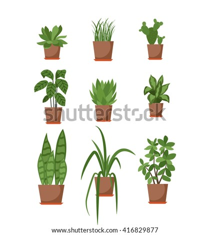 Set of potted plant isolated. Vector flat plant pot illustration. Collection of flat flower pot. Colorful plants in pot for your design. Home flower pot icons set - stock vector