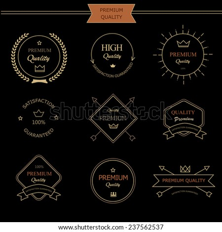 Set of premium quality vintage style elements for  labels and badges vector design - stock vector