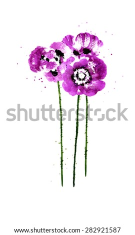 Set of purple watercolor poppy flowers - stock vector
