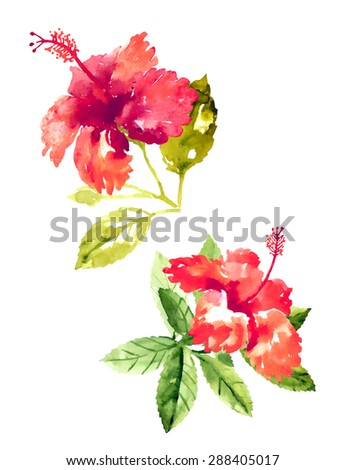 Set of red watercolor hibiscus flowers - stock vector
