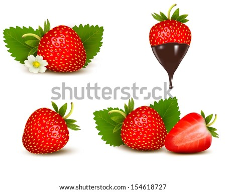 Set of ripe sweet strawberry and flower with leaves and chocolate. Vector.  - stock vector