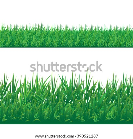 Set of seamless grass border isolated on white background. Vector illustration - stock vector