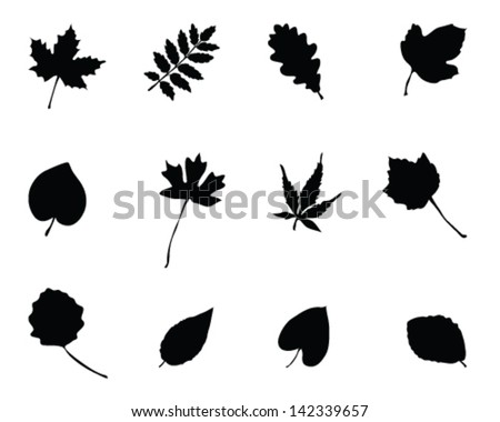 Set of silhouettes of foliage 2-vector - stock vector