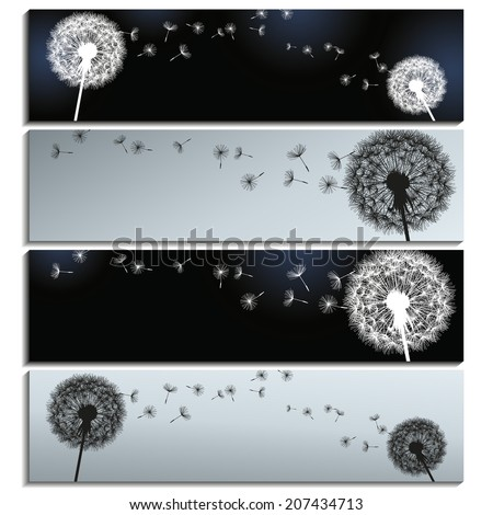 Set of stylish horizontal banners black and grey with dandelions  isolated on white background. Beautiful trendy romantic wallpaper. Vector illustration - stock vector
