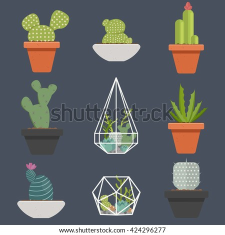 Set of succulent plants and cactus in pots and glass terrariums. Cartoon Cactus. Flat botanical vector icons.Vector illustration.  - stock vector