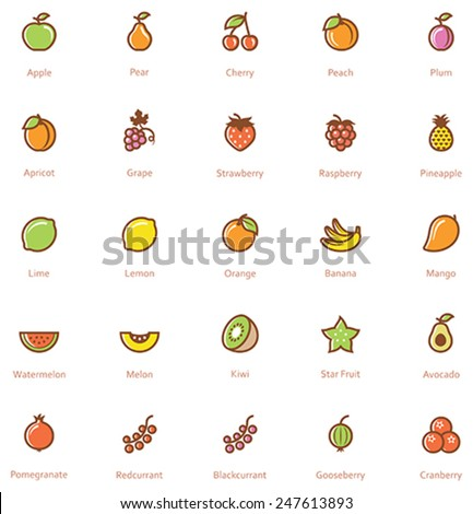 Set of the fruits related icon - stock vector