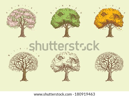 Set of trees at engraving style. Trees with green,  orange and without leaves  and with blossoming. - stock vector