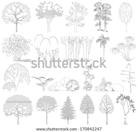 Set of trees, bushes, plants. Side view. Vector illustration. Drawing on a white background - stock vector