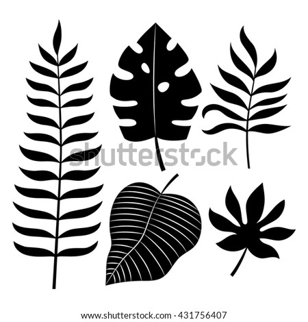 Set of tropical leaves vector illustration. - stock vector