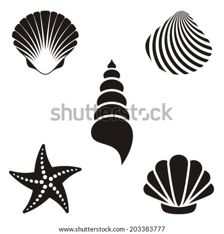 Set of various black sea shells and starfish - stock vector