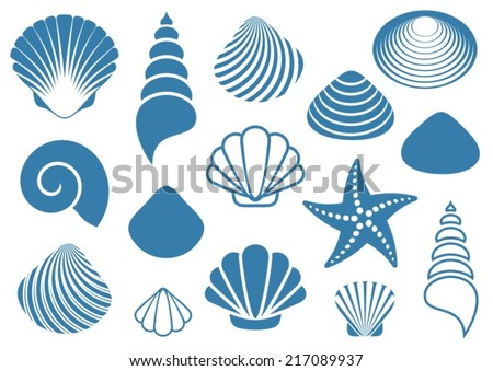 Set of various blue sea shells and starfish - stock vector