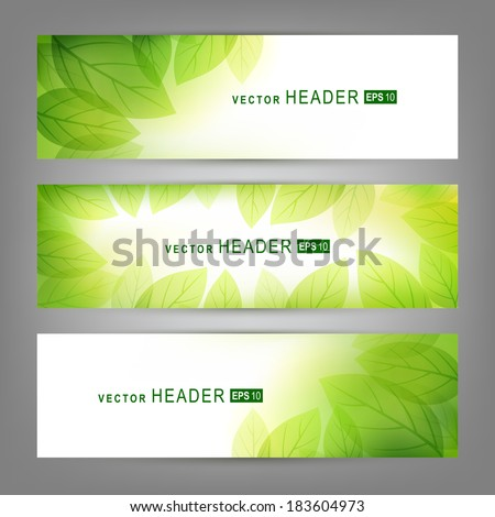Set of vector banners with fresh green leaves.  Spring or summer nature background - stock vector