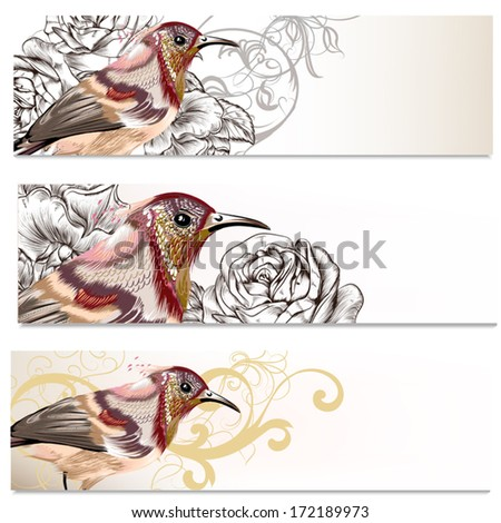 Set of  vector  business cards   in floral style with birds - stock vector