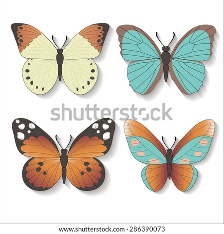 Set of Vector butterfly. 4 bright vector butterflies with shadows on a white background. - stock vector